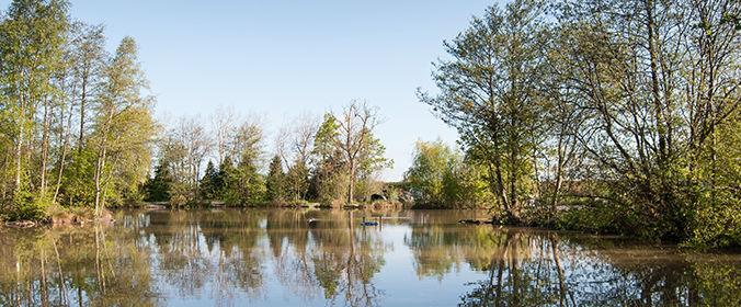 The Oaks Lakes Sessay
