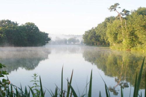Bury Hill Fishery Surrey